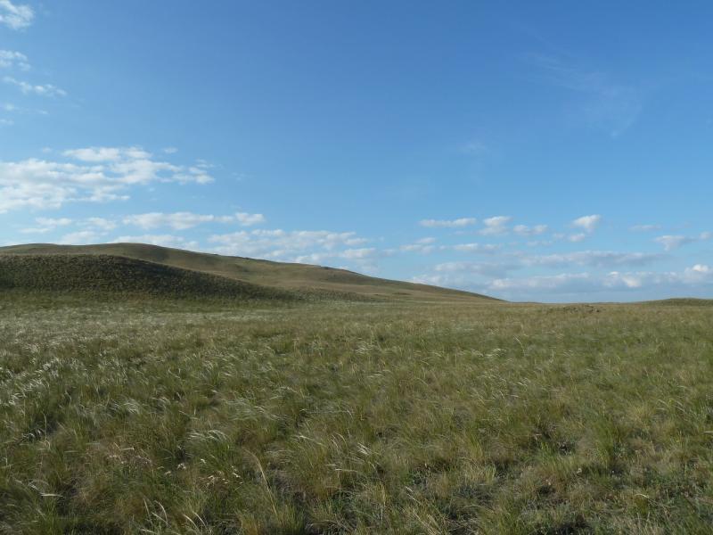 20120508. В Баянаул: вид на холмы предгорий Кокдомбак из двери палатки.