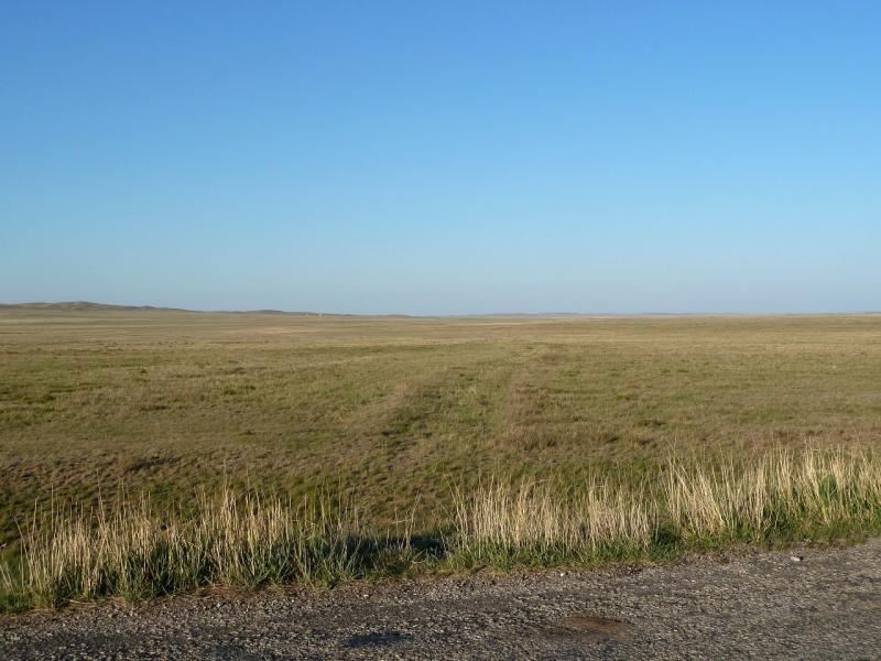 20120509. Покидая Баянаул: заросшая дорога, по которой предполагалось двигаться в Курчатов.