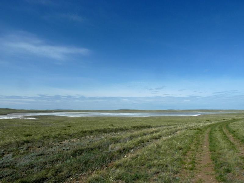 20120510. Степями до Курчатова: дорога на Курчатов в районе солёного озера Ашикулук.