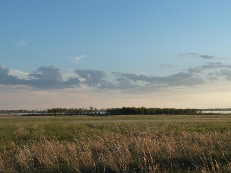20120513. Сосновыми борами ВКО: у озера Шошкалы, на границе Восточно-Казахстанской и Павлодарской областей.