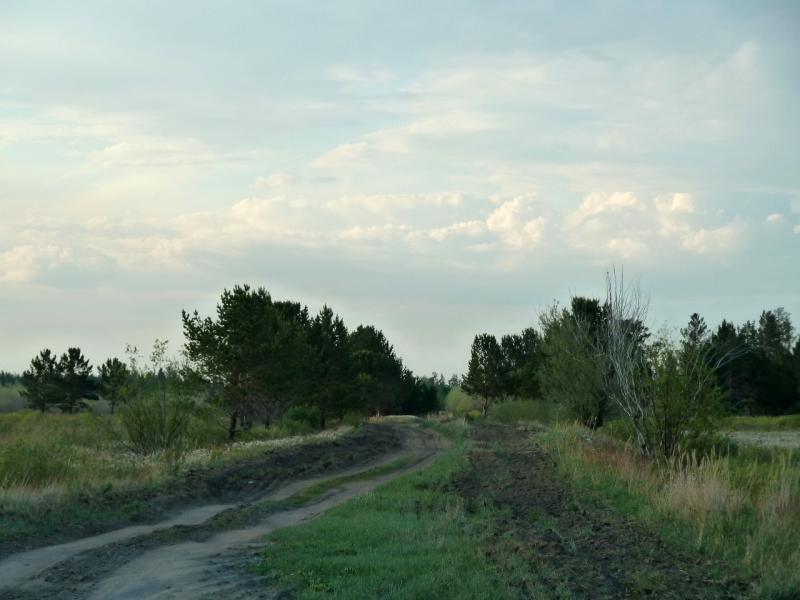 20120515. Шалдайскими борами: въезд в лес у села Сугур.