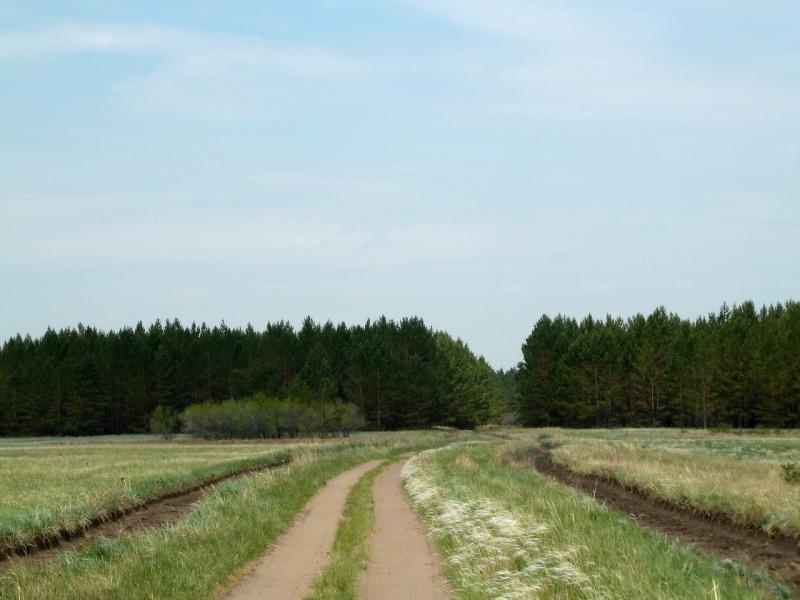 20120516. Краем Щербактинского района: дорога из Сугура в Жанааул.