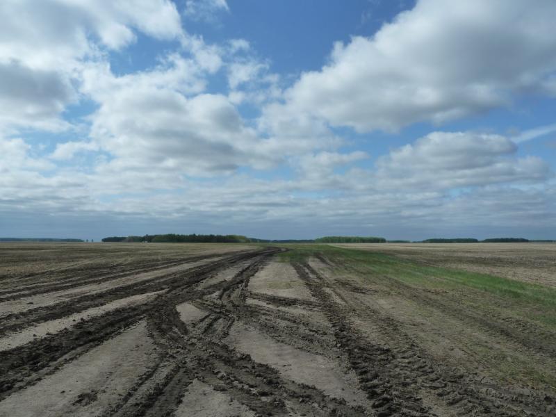 20120521. Пограничными местами: полевая дорога после дождя.