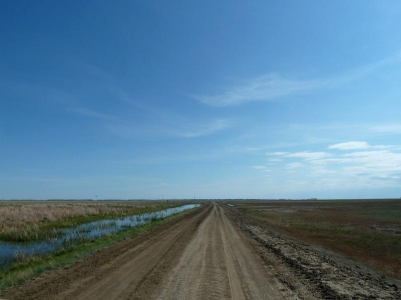 20120522. Сухопутным полуостровом: дорога на Новокузьминку болотом Антошинское.