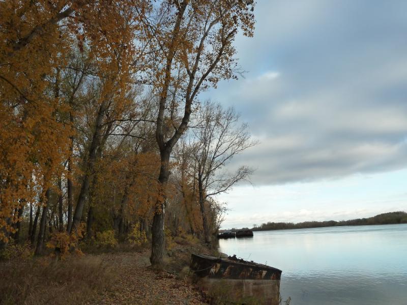 20121005. На левом берегу Иртыша, напротив грузового речного порта.