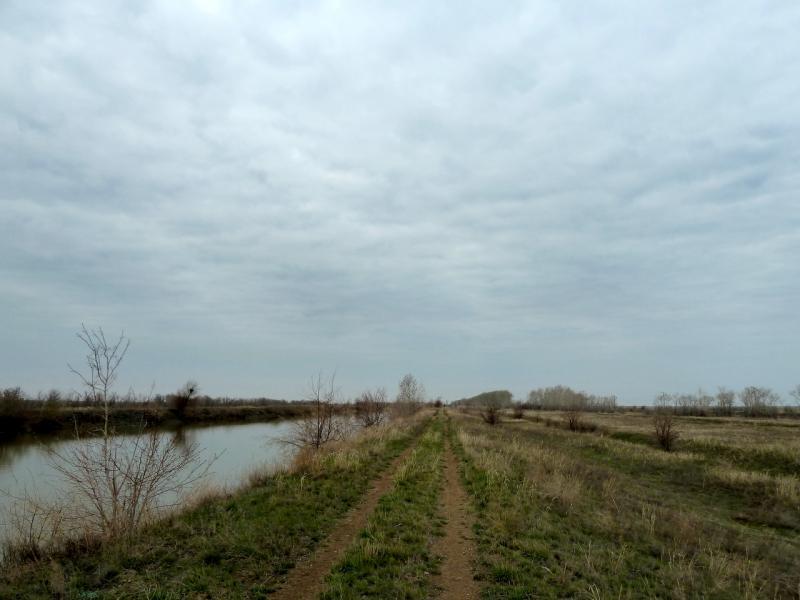 """20130422. Вдоль канала """"Иртыш - Караганда"""", неподалеку от посёлка Калкаман."""
