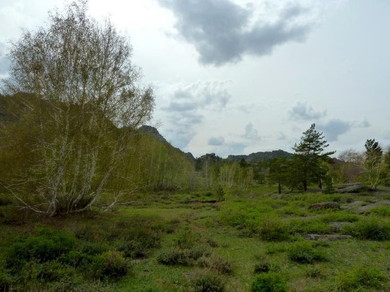 20130424. В долине неподалеку от посёлка Торайгыр.