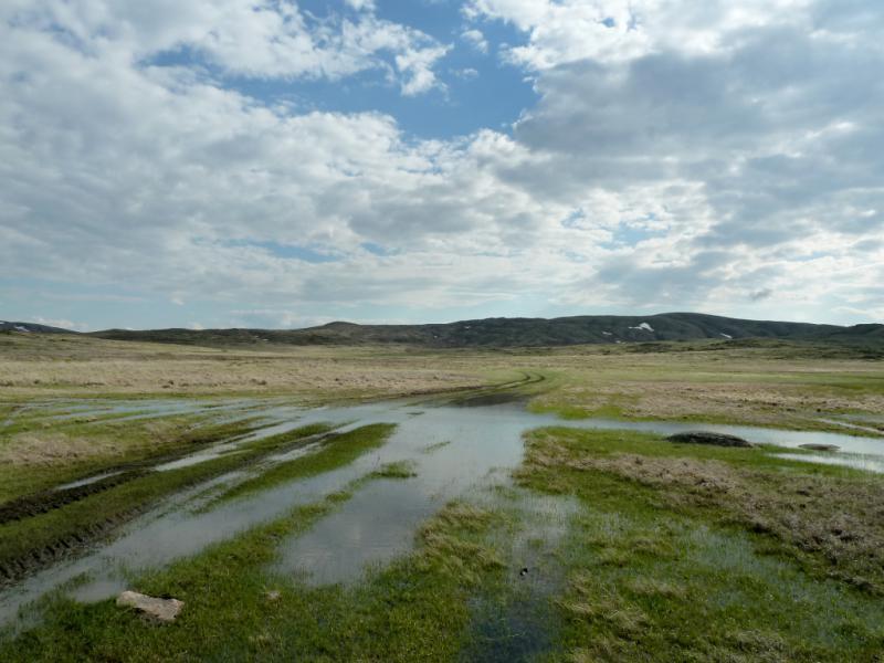 20130425. Разлившийся ручей в холмах мелкосопочника, южнее Баянаула.