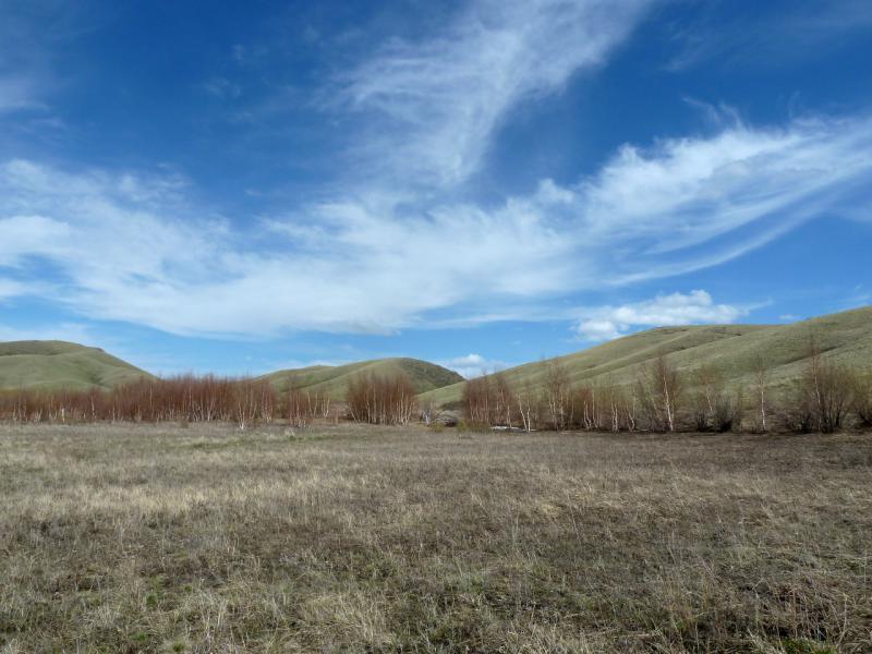 20130426. Урочище в горах Желтау, неподалеку от фермы-зимовки Копай.
