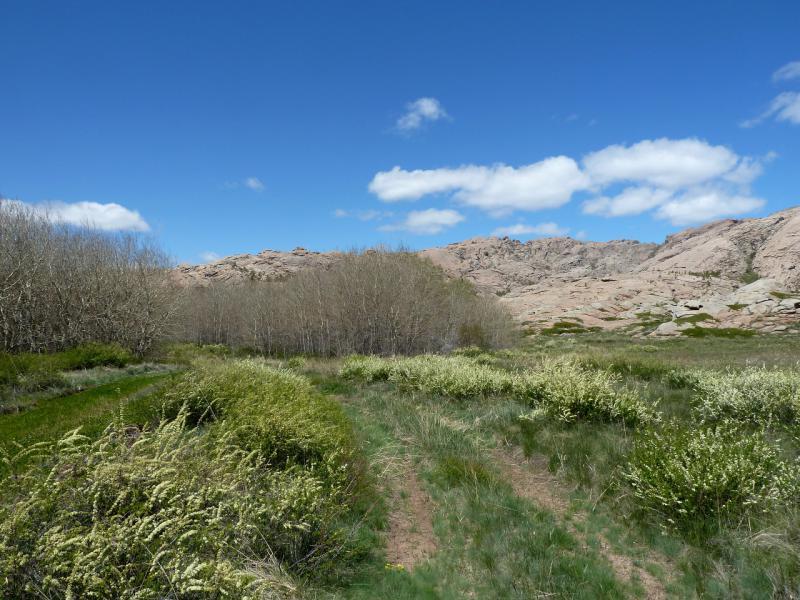 20130504. У подножья горы Аксоран.