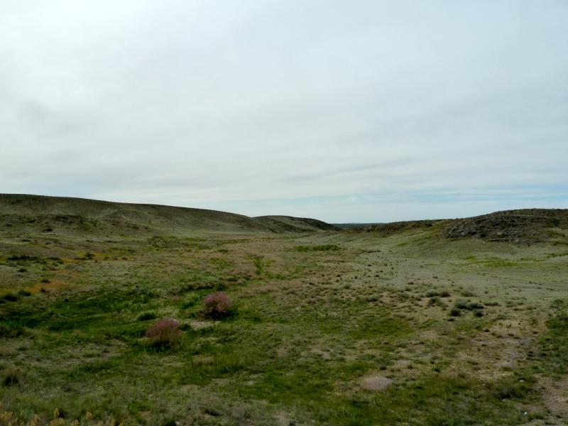 20130510. В холмах Чу-Илийского хребта.