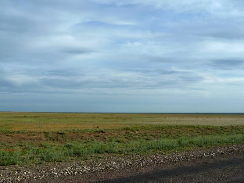 20130510. У дороги A-358 в Чуйской долине, неподалеку от посёлка Хантау.