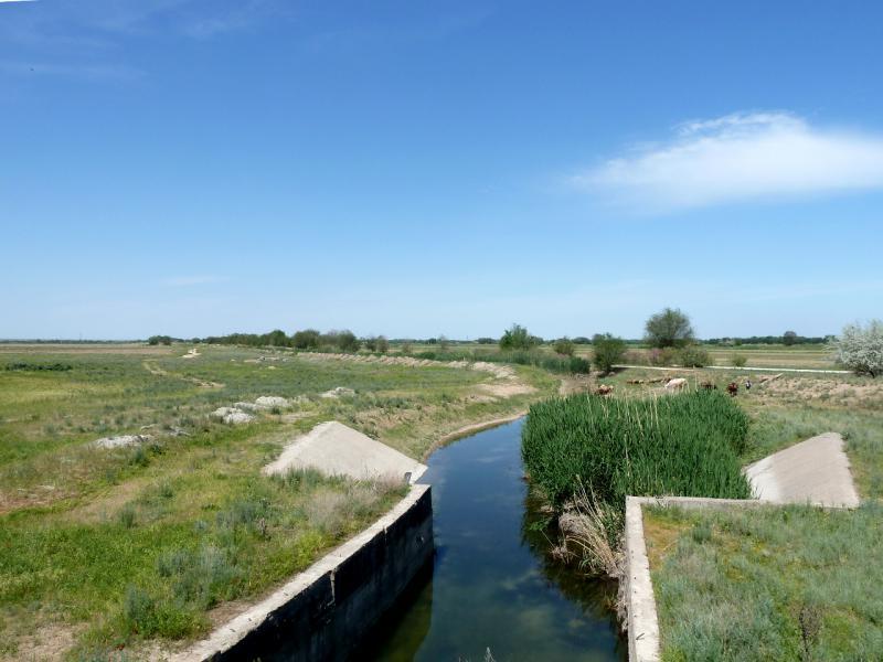 20130512. Отводные каналы в Чуйской долине.