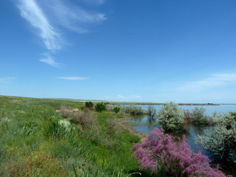 20130512. На берегу Тасуткольского водохранилища.
