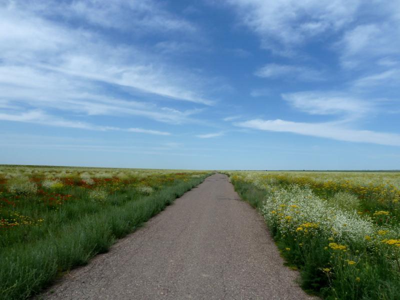 20130512. Дорога долиной от Тасуткольского водохранилища к дороге А-358.