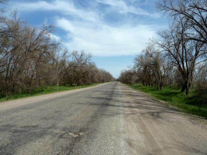 20130512. Дорога А-358 в средней части Чуйской долины.