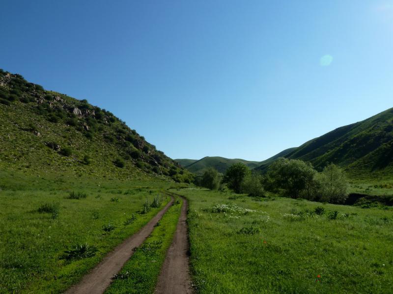 20130515. Дорога в ущелье речки Карасулы.