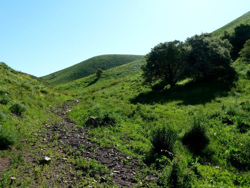 20130515. В начале тропы из ущелья речки Карасулы.