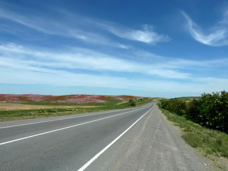 20130516. Цветущие холмы у автодороги A-2.