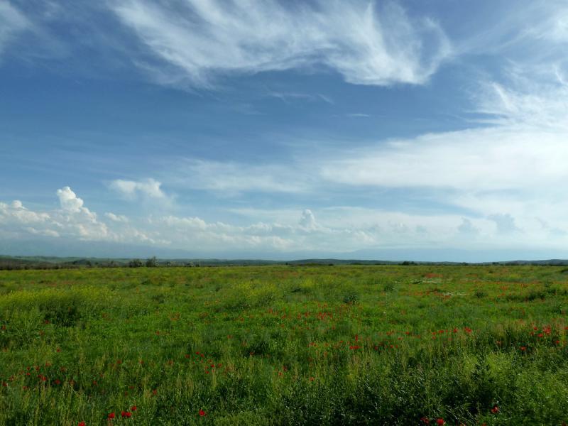 20130516. Вид к северу от автодороги A-2.