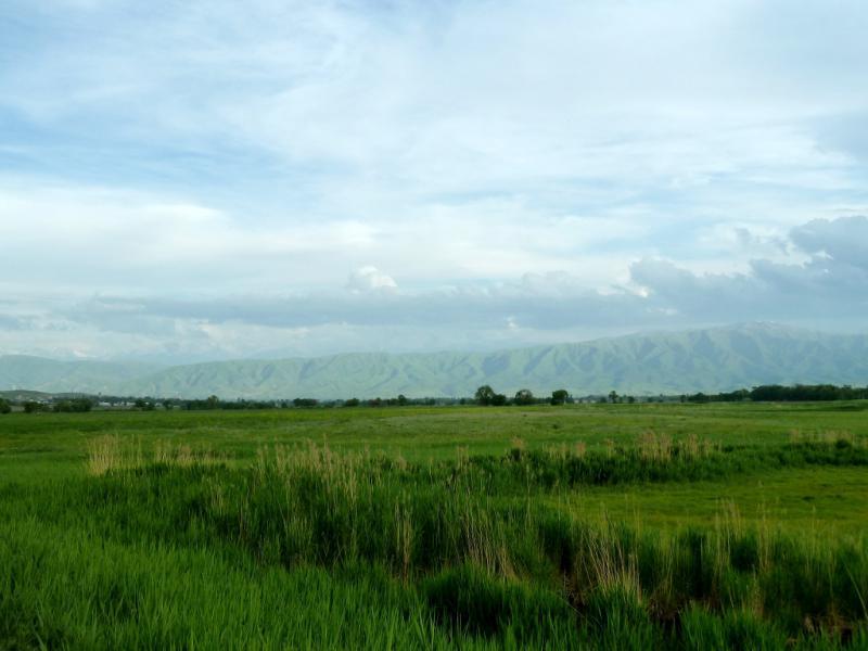 20130516. Вид к югу от автодороги A-2.