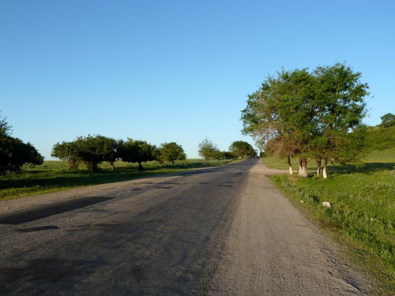 20130517. На дороге между посёлками Талгар и Есик.