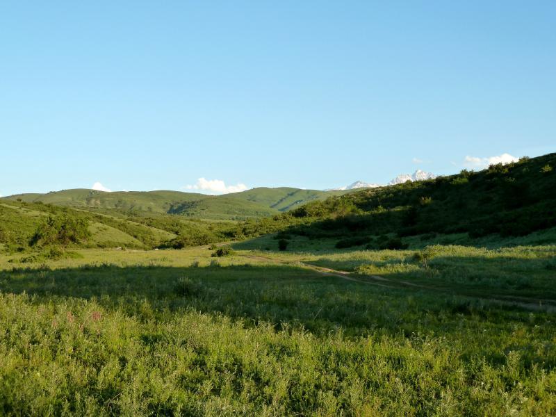 20130517. Вид на горные распадки у посёлка Кайназар.