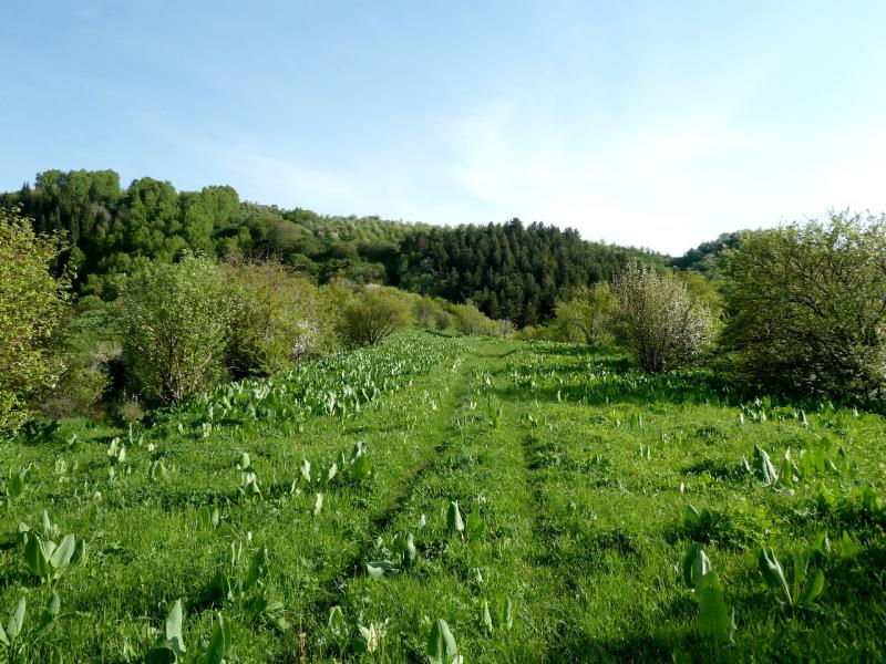 20130518. Дорога в горах Заилийского Алатау.