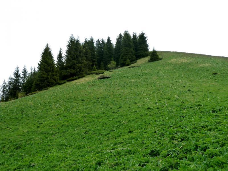 20130519. Обзорная вершина, с которой я пытался найти потерянную тропу.