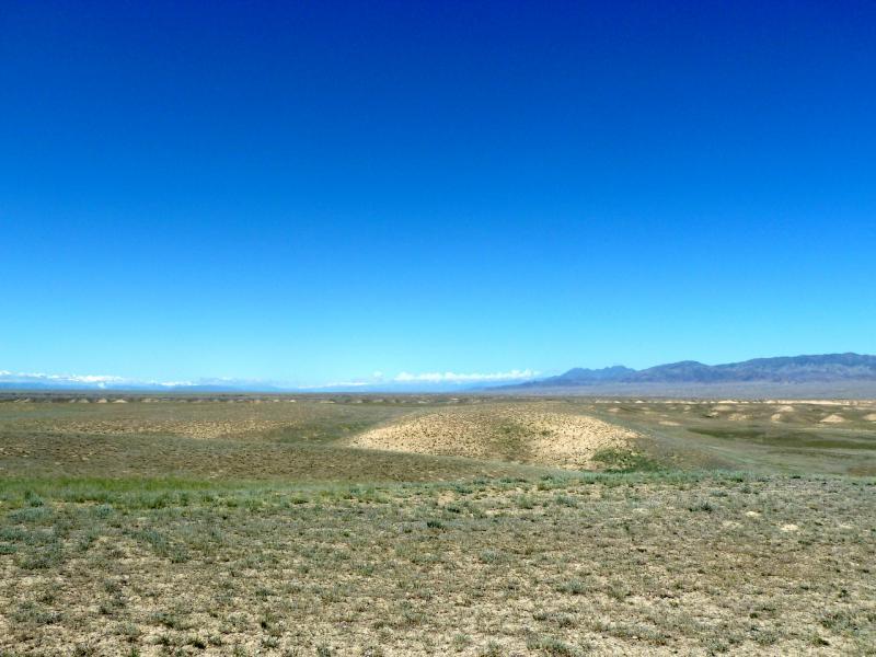 20130522. Полупустыня плоскогорья Кату.