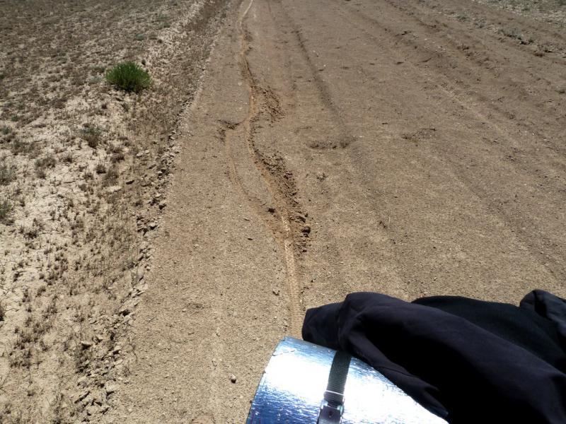 20130522. Образчик покрытия типичной Чарынской дороги.