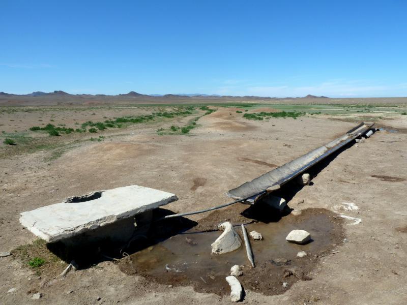 20130522. Водопой на аксайском пастбище.