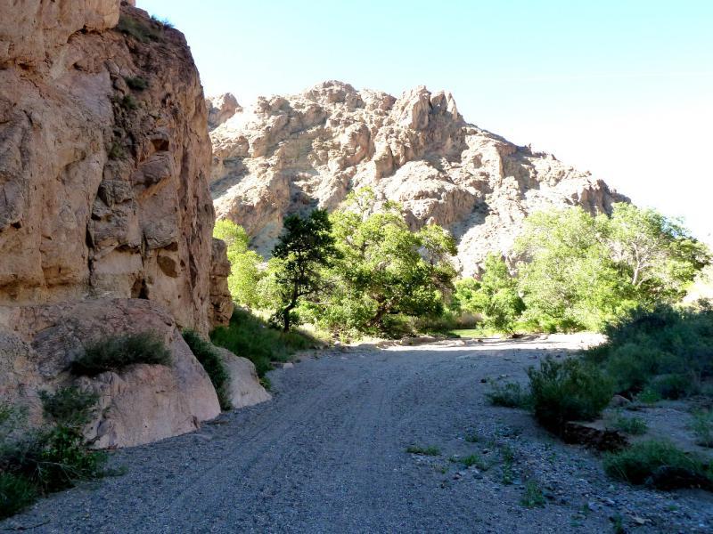 20130522. В месте выхода каньона Бартогай на реку Чарын.