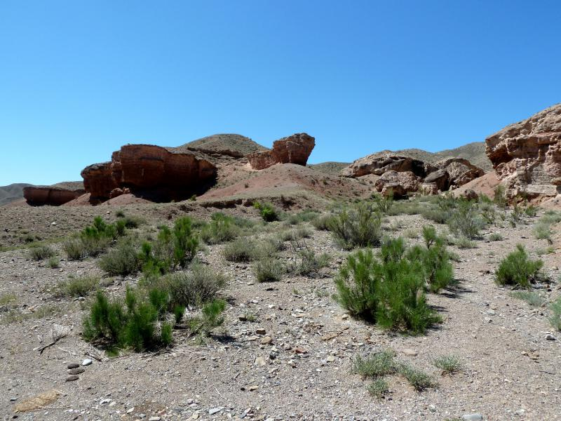20130523. Склоны каньона речки Темирлик.