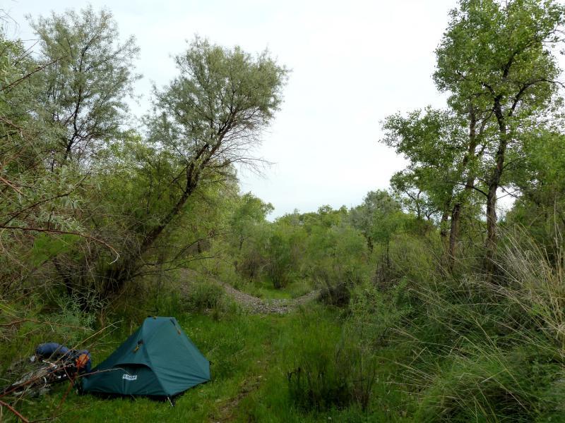 20130524. Вид на место стоянки в старице реки Чарын.