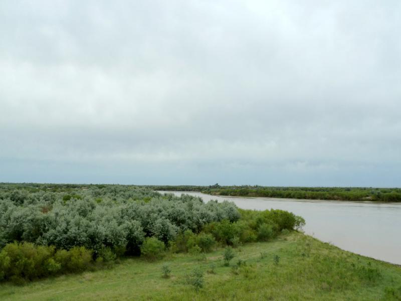 20130524. Вид с моста на лес у реки Или.