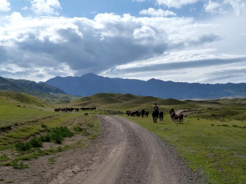 20130525. Путь на джайляу, у гор Ортатау.