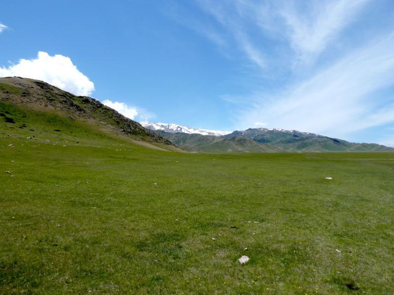 20130526. Выстриженные скотом склоны в западной части урочища Аяксаз.