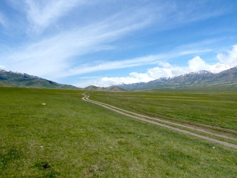 20130526. Дорога в западную часть урочища, к перевалу Уйгентас.