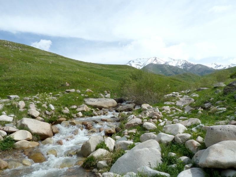 20130527. Один из ручьёв, стекающих с гор Кызылкия.