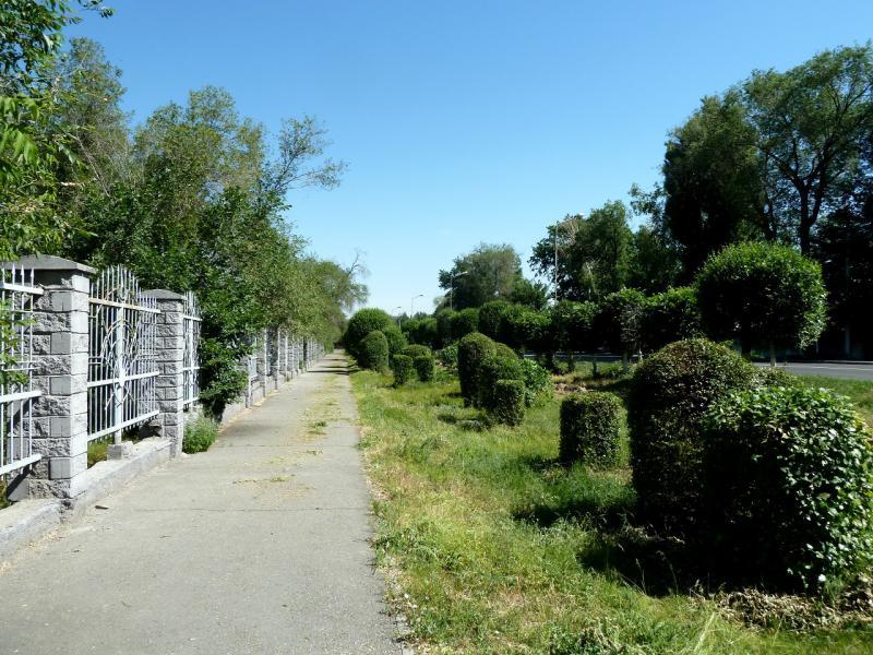 20130529. Вдоль ограды центрального сквера Талдыкоргана.
