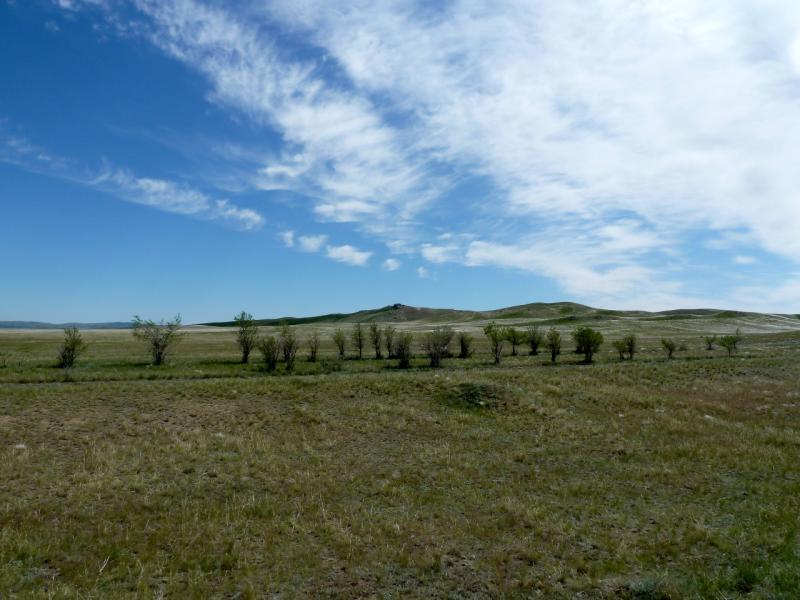 20130531. Холмы в предгорьях хребта Сарыжал.