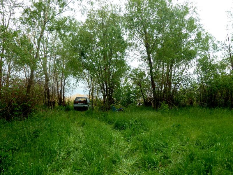 20130602. Место стоянки, неподалеку от впадения речки Кисык в Бухтарминское водохранилище.
