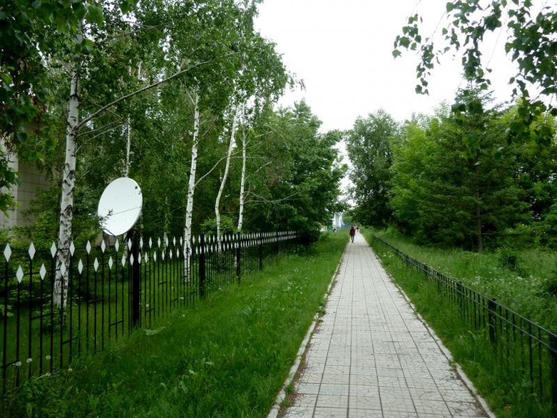 20130604. Аллея центральной улицы села Большой Нарым.