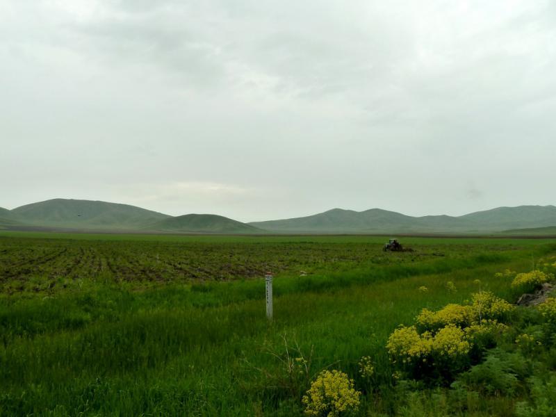 20130604. Большенарымские поля.