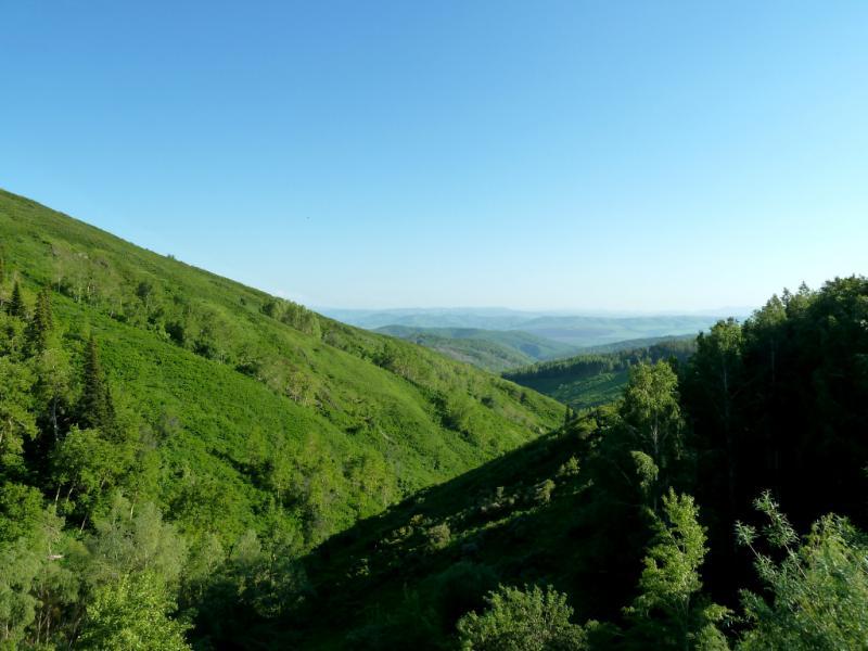 20130607. Вид на ущелье под насыпью новой дороги, в районе села Ушаново.