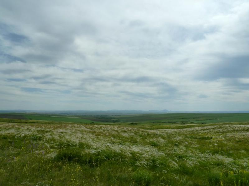 20130609. Вид на ковыльные холмы и поля зерновых между сёлами Березовка и Рассыпное.