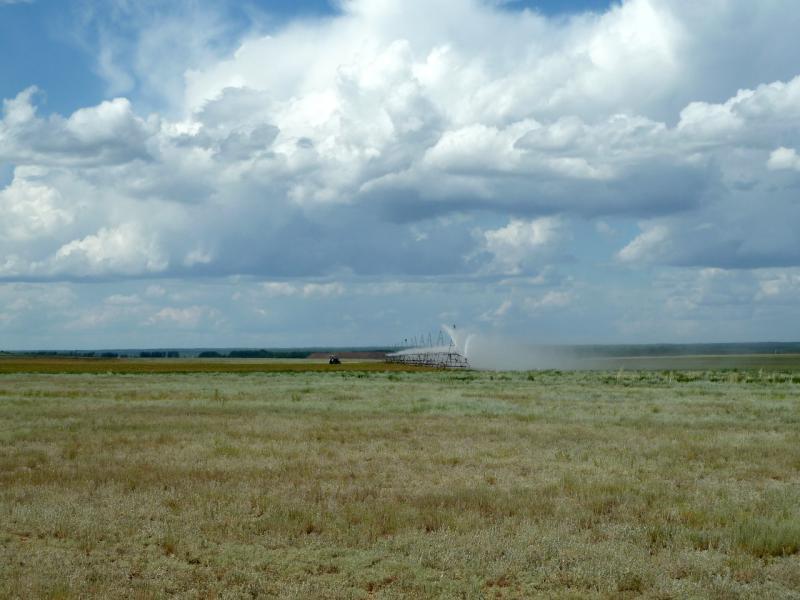 20130611. Дождевальная установка на полях у села Гранитное.