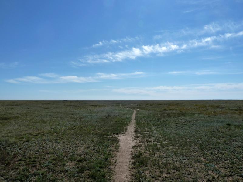 20130907. Истончающиеся степные тропы.