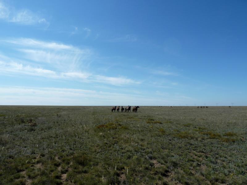 20130907. На заброшенной степной дороге в районе озера Жамантуз.